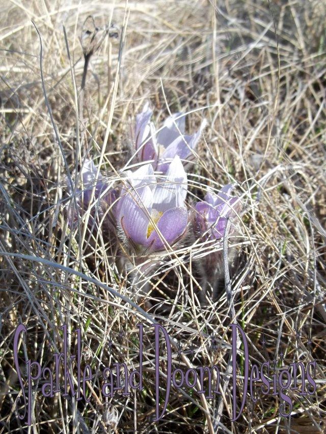 blog2012.04.23 ph01