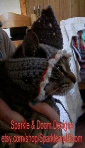 grey Shark Cat Hat